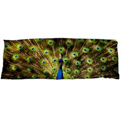 Peacock Bird Body Pillow Case (Dakimakura)