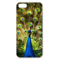 Peacock Bird Apple Seamless Iphone 5 Case (clear) by Simbadda