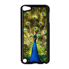 Peacock Bird Apple Ipod Touch 5 Case (black) by Simbadda