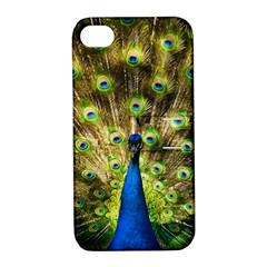 Peacock Bird Apple Iphone 4/4s Hardshell Case With Stand by Simbadda