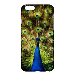 Peacock Bird Apple Iphone 6 Plus/6s Plus Hardshell Case by Simbadda