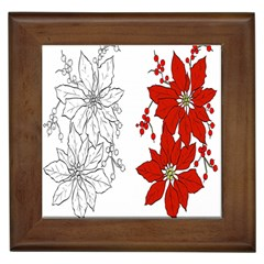 Poinsettia Flower Coloring Page Framed Tiles by Simbadda