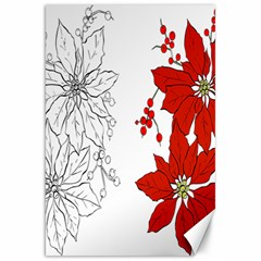 Poinsettia Flower Coloring Page Canvas 20  X 30   by Simbadda