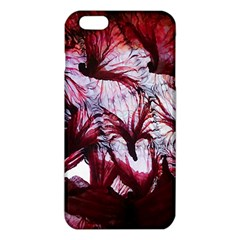 Jellyfish Ballet Wind Iphone 6 Plus/6s Plus Tpu Case by Simbadda