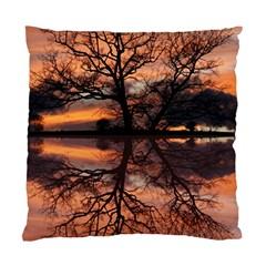 Aurora Sunset Sun Landscape Standard Cushion Case (one Side) by Simbadda