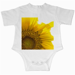Plant Nature Leaf Flower Season Infant Creepers by Simbadda