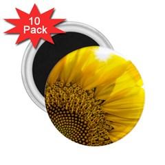 Plant Nature Leaf Flower Season 2 25  Magnets (10 Pack)  by Simbadda