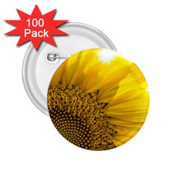Plant Nature Leaf Flower Season 2 25  Buttons (100 Pack)  by Simbadda