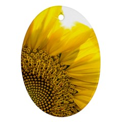 Plant Nature Leaf Flower Season Oval Ornament (two Sides) by Simbadda