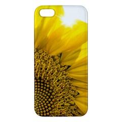 Plant Nature Leaf Flower Season Apple Iphone 5 Premium Hardshell Case by Simbadda