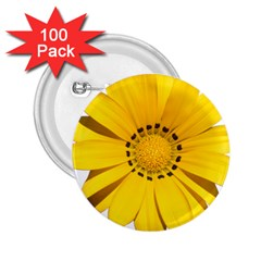 Transparent Flower Summer Yellow 2 25  Buttons (100 Pack)  by Simbadda
