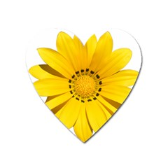 Transparent Flower Summer Yellow Heart Magnet by Simbadda