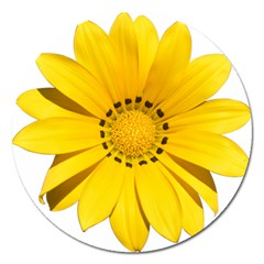 Transparent Flower Summer Yellow Magnet 5  (round) by Simbadda
