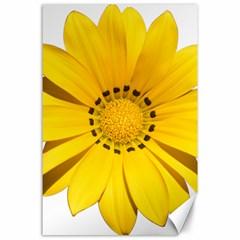 Transparent Flower Summer Yellow Canvas 24  X 36  by Simbadda