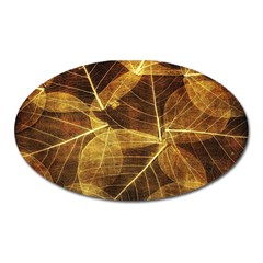 Leaves Autumn Texture Brown Oval Magnet by Simbadda