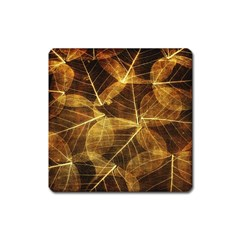 Leaves Autumn Texture Brown Square Magnet by Simbadda
