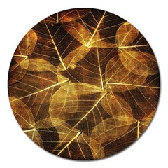 Leaves Autumn Texture Brown Magnet 5  (round) by Simbadda