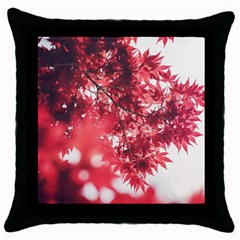 Maple Leaves Red Autumn Fall Throw Pillow Case (black) by Onesevenart