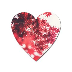 Maple Leaves Red Autumn Fall Heart Magnet by Onesevenart
