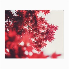 Maple Leaves Red Autumn Fall Small Glasses Cloth by Onesevenart