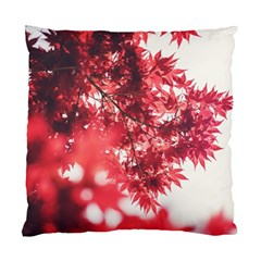 Maple Leaves Red Autumn Fall Standard Cushion Case (one Side) by Onesevenart