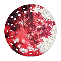 Maple Leaves Red Autumn Fall Ornament (round Filigree) by Onesevenart