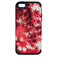 Maple Leaves Red Autumn Fall Apple Iphone 5 Hardshell Case (pc+silicone) by Onesevenart