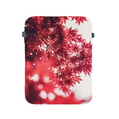 Maple Leaves Red Autumn Fall Apple Ipad 2/3/4 Protective Soft Cases by Onesevenart