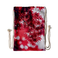 Maple Leaves Red Autumn Fall Drawstring Bag (small) by Onesevenart