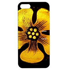 Yellow Flower Stained Glass Colorful Glass Apple Iphone 5 Hardshell Case With Stand by Onesevenart