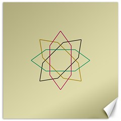 Shape Experimen Geometric Star Sign Canvas 20  X 20   by Alisyart