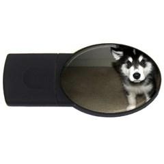 Alaskan Malamute Pup 3 USB Flash Drive Oval (2 GB)