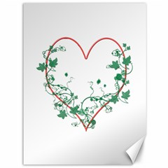 Heart Ranke Nature Romance Plant Canvas 36  X 48   by Simbadda