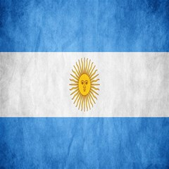 Argentina Texture Background Canvas 12  X 12   by Simbadda