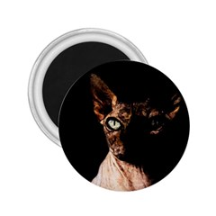 Sphynx Cat 2 25  Magnets by Valentinaart