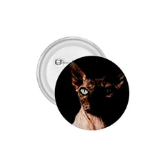 Sphynx Cat 1 75  Buttons by Valentinaart
