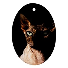 Sphynx Cat Ornament (oval) by Valentinaart
