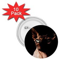 Sphynx Cat 1 75  Buttons (10 Pack) by Valentinaart