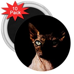 Sphynx Cat 3  Magnets (10 Pack)  by Valentinaart
