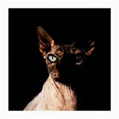Sphynx Cat Medium Glasses Cloth by Valentinaart
