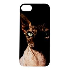 Sphynx Cat Apple Iphone 5s/ Se Hardshell Case by Valentinaart