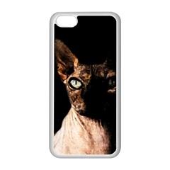 Sphynx Cat Apple Iphone 5c Seamless Case (white) by Valentinaart