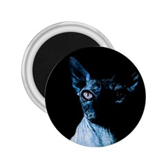 Blue Sphynx Cat 2 25  Magnets by Valentinaart