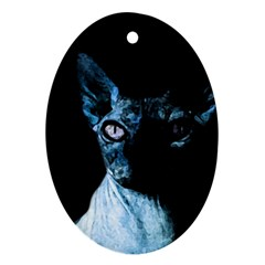 Blue Sphynx Cat Ornament (oval) by Valentinaart