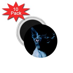 Blue Sphynx Cat 1 75  Magnets (10 Pack)  by Valentinaart