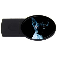 Blue Sphynx Cat Usb Flash Drive Oval (2 Gb) by Valentinaart