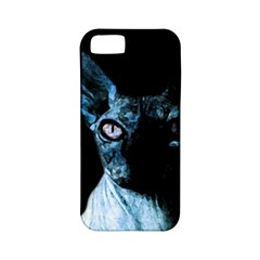 Blue Sphynx Cat Apple Iphone 5 Classic Hardshell Case (pc+silicone) by Valentinaart