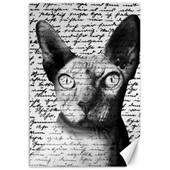Sphynx Cat Canvas 20  X 30   by Valentinaart