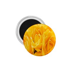 Yellow Neon Flowers 1 75  Magnets by Simbadda