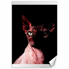 Sphynx Cat Canvas 12  X 18   by Valentinaart
